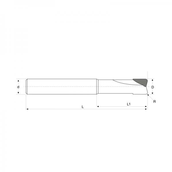 Fresa MD PCD-z2-24